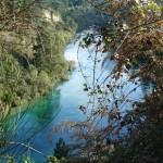 Der Fluss Waikato