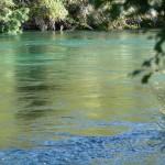 Der Waikato-River