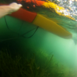 Erste Unterwasseraufnahmen